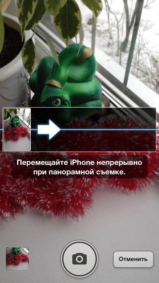 IMG_1734-315x560